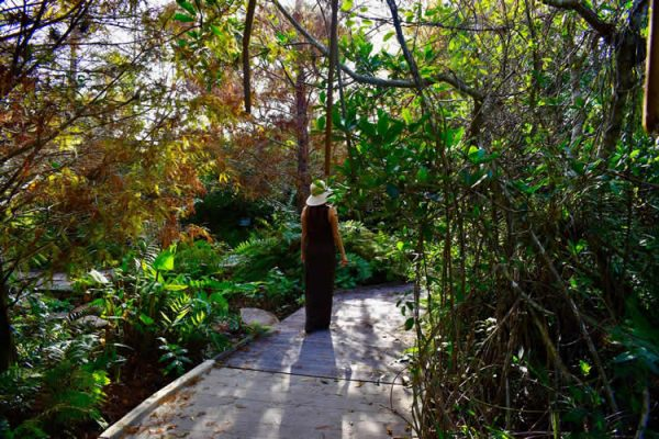 Naples Botanical Garden walkway